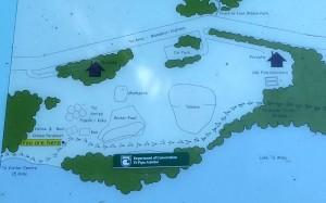 ワイルドライフ・センター案内図