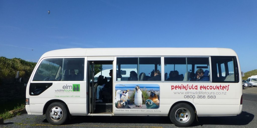 野生動物が描かれたツアー・バス