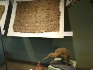 キウィの羽で作った儀式用マント