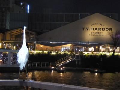 T.Y.Harborを見つめるアオサギ