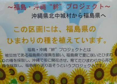 「福島・沖縄絆プロジェクト」とは