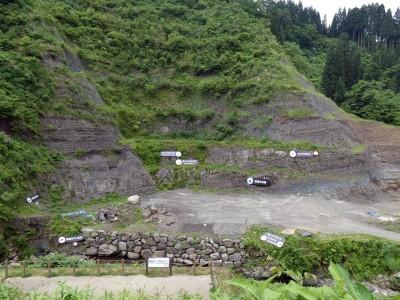 天然記念物に指定されてしまった発掘現場