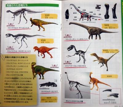 発掘された恐竜たち(野外恐竜博物館パンフレットより)